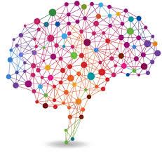 Guérir grâce à la neuroplasticité, une entrevue du psychiatre Norman Doidge